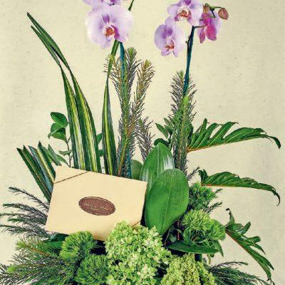 flores y chocolates de regalo